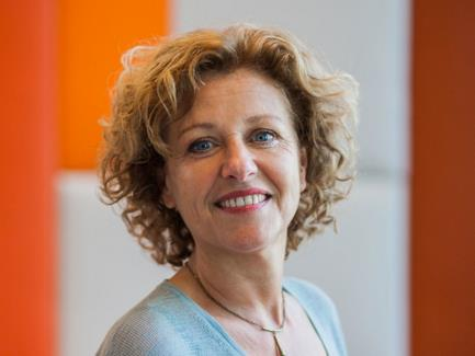 The Impact of AI on Organizations: an interview with Marleen Huysman
